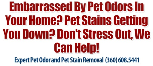 Lintons Pet Odor Removal Vancouver Wa