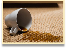 how to get rid of coffee stains on your carpet