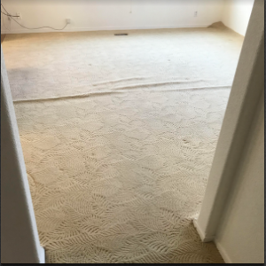 Carpet Stretching before 1-300