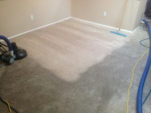 Vancouver Wa Carpet Cleaning Pictures